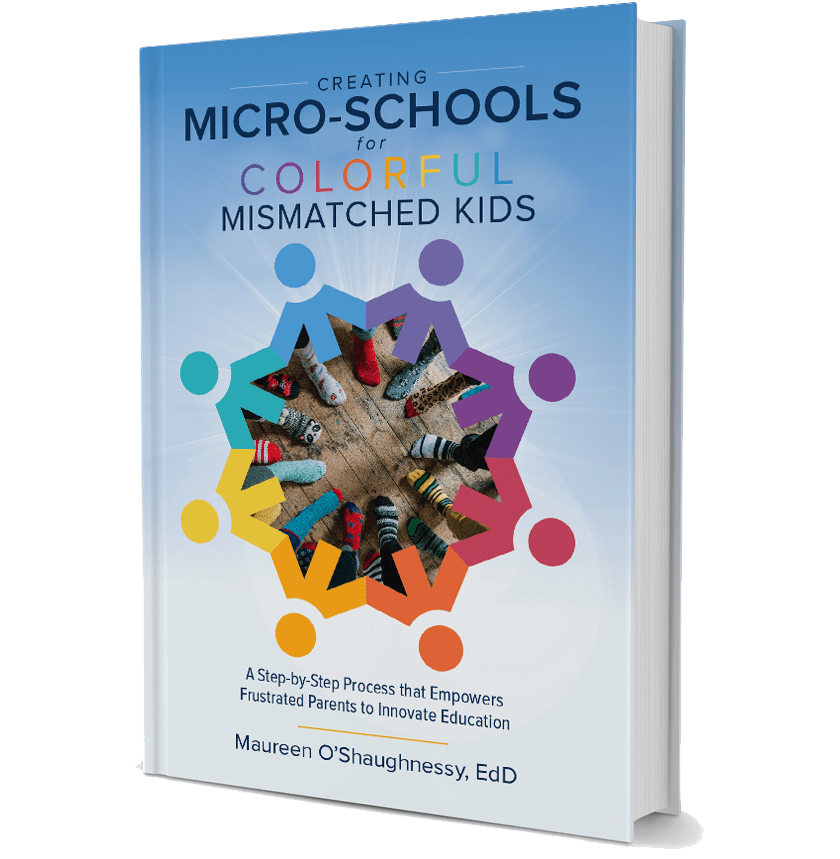 Creating Micro-Schools